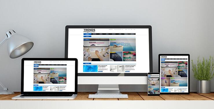 企业品牌网站建设